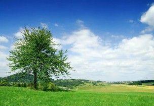 champs et ciel 3