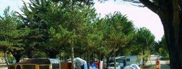 campings-85690-notre-dame-de-monts-1