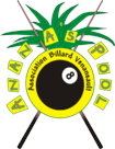logo-ananas-pool-copier-copier